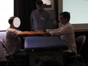 atelier sur le diagnostic du triple Réchauffeur, observation et palpation, prise des pouls.